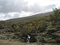 fuensanta - Alojamientos rurales El Palero